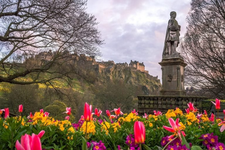 The Best Florists for Flower Delivery in Edinburgh