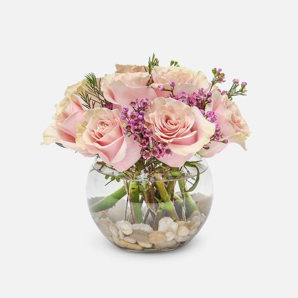 Plantshed rose delivery new york city