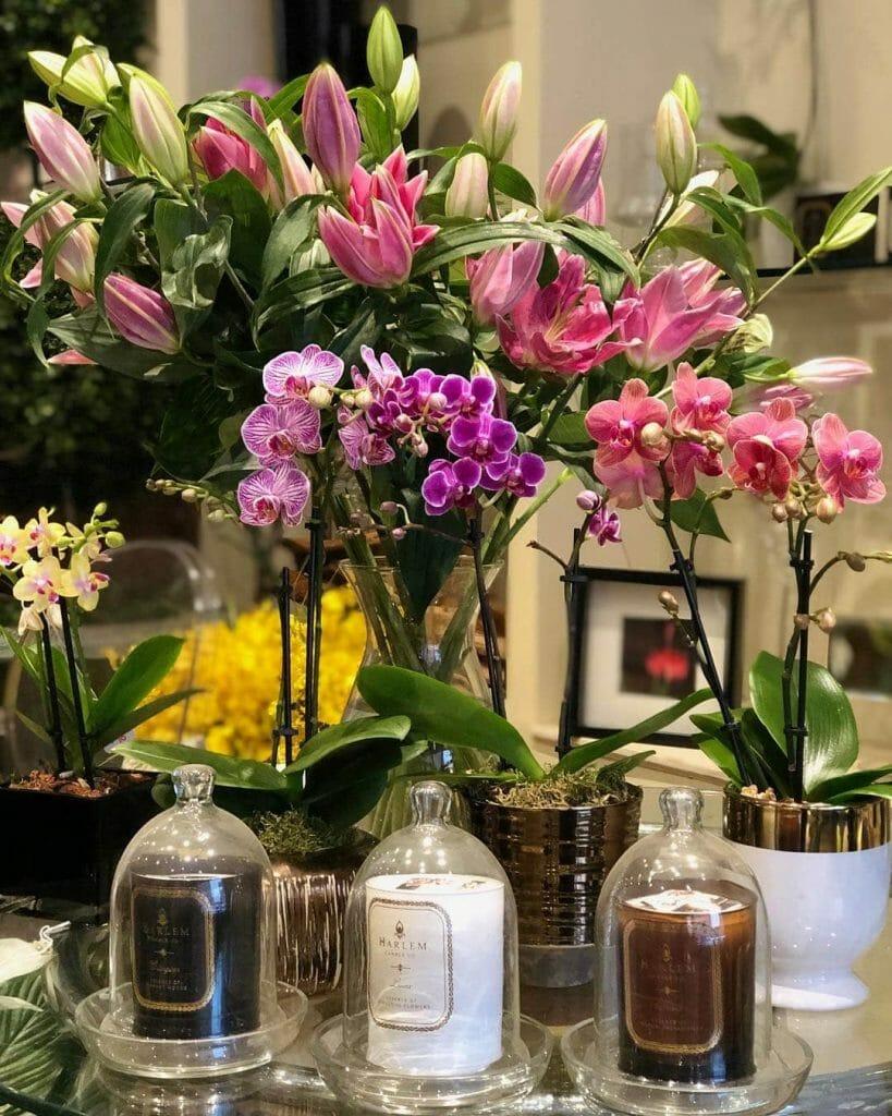Barbara's Flowers New York City Florist