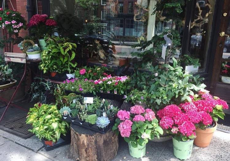 Floral Heights New York City Flower Shop