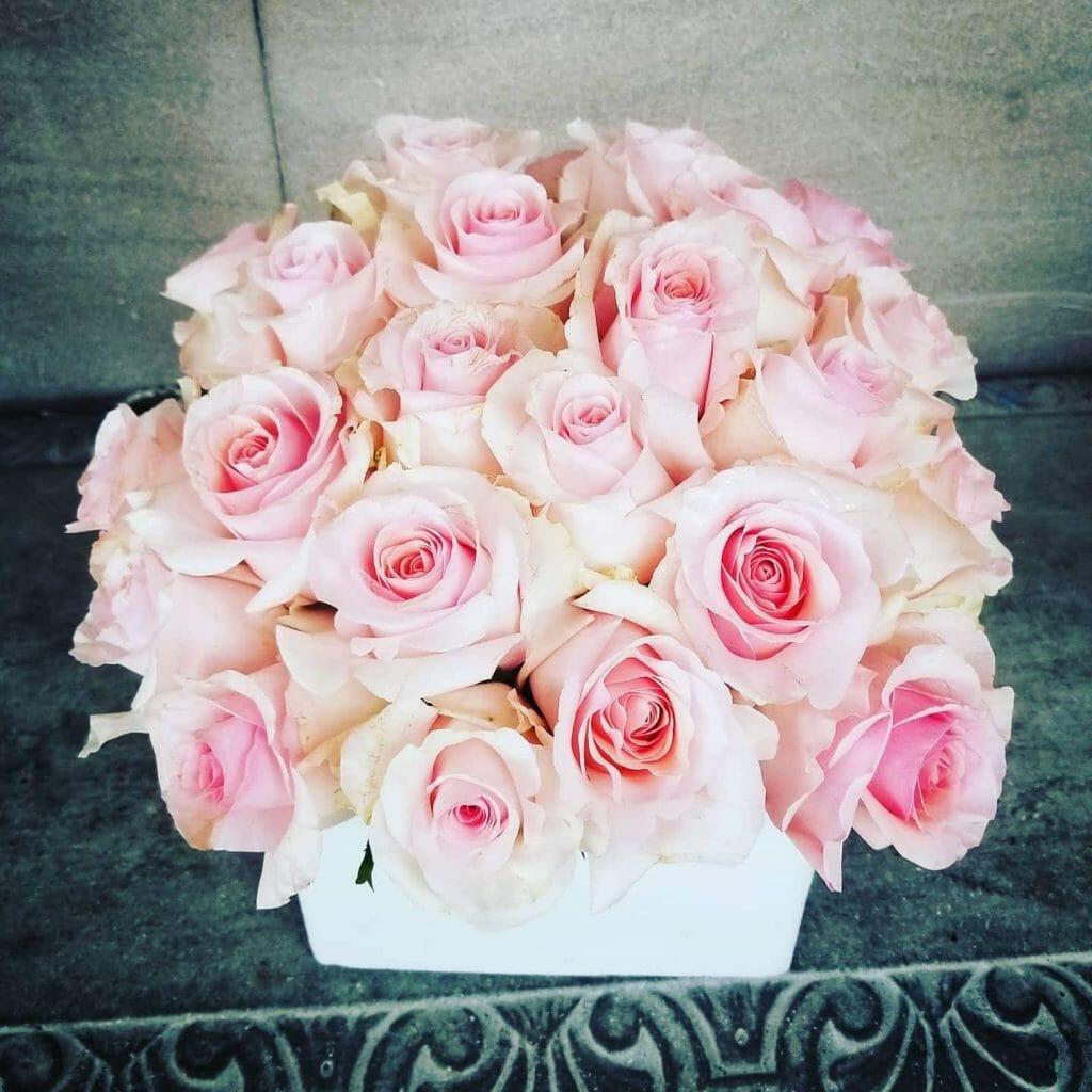 Mille Fleur Roses