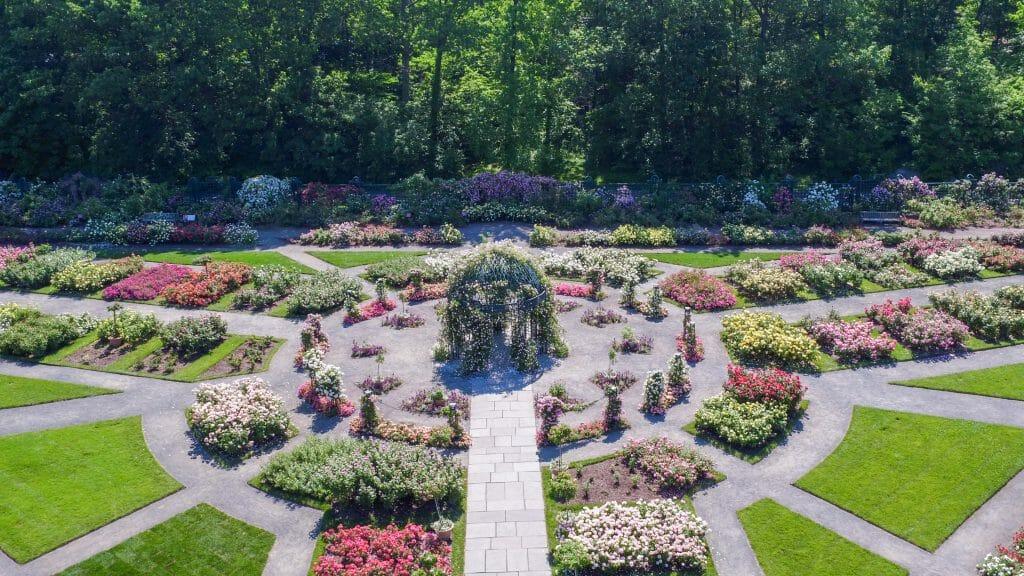 New York Botanical Garden Peggy Rockefeller Rose Garden