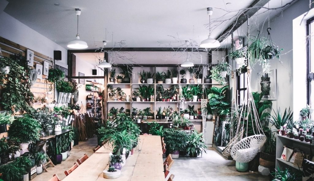 Stonefruit Botanical New York Flower Shop