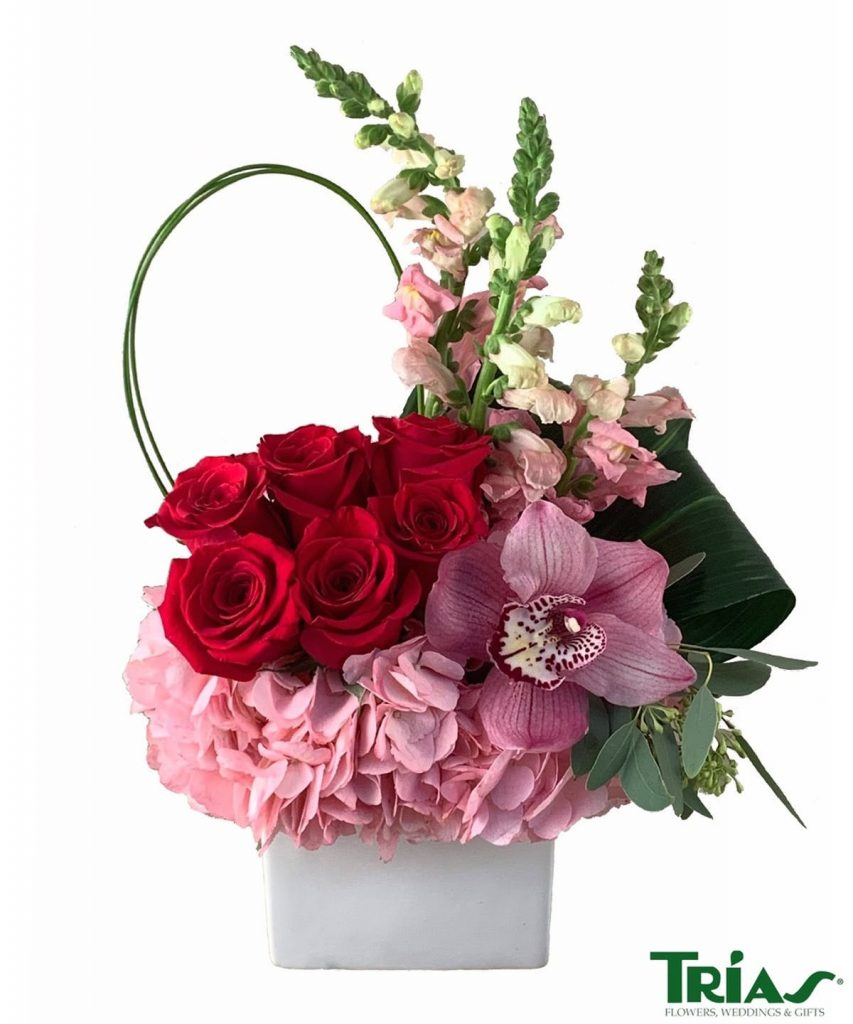 Trias Flowers Roses