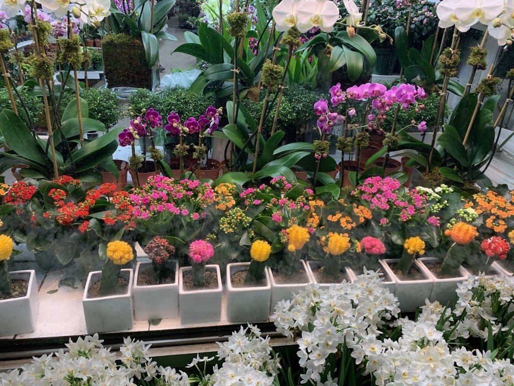The New York City Flower District