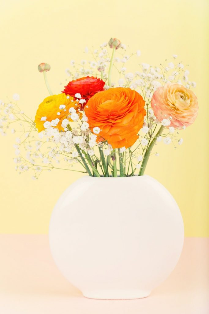 Ranunculus flowers care and arrangements tips