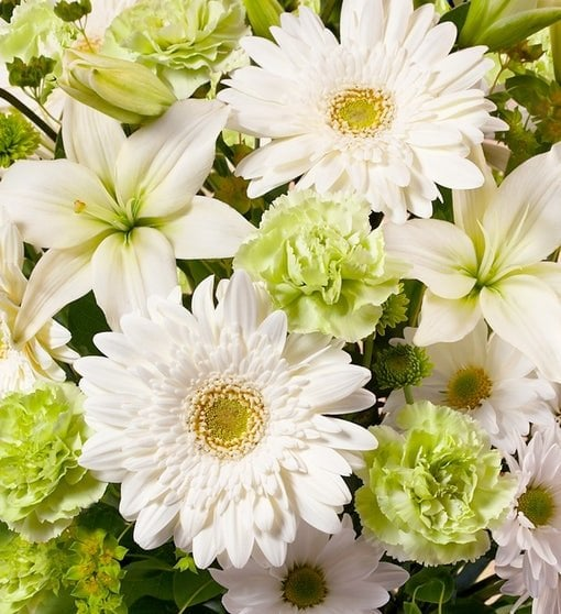 1-800 Flowers Bloom of the Month Club Flower Subscription