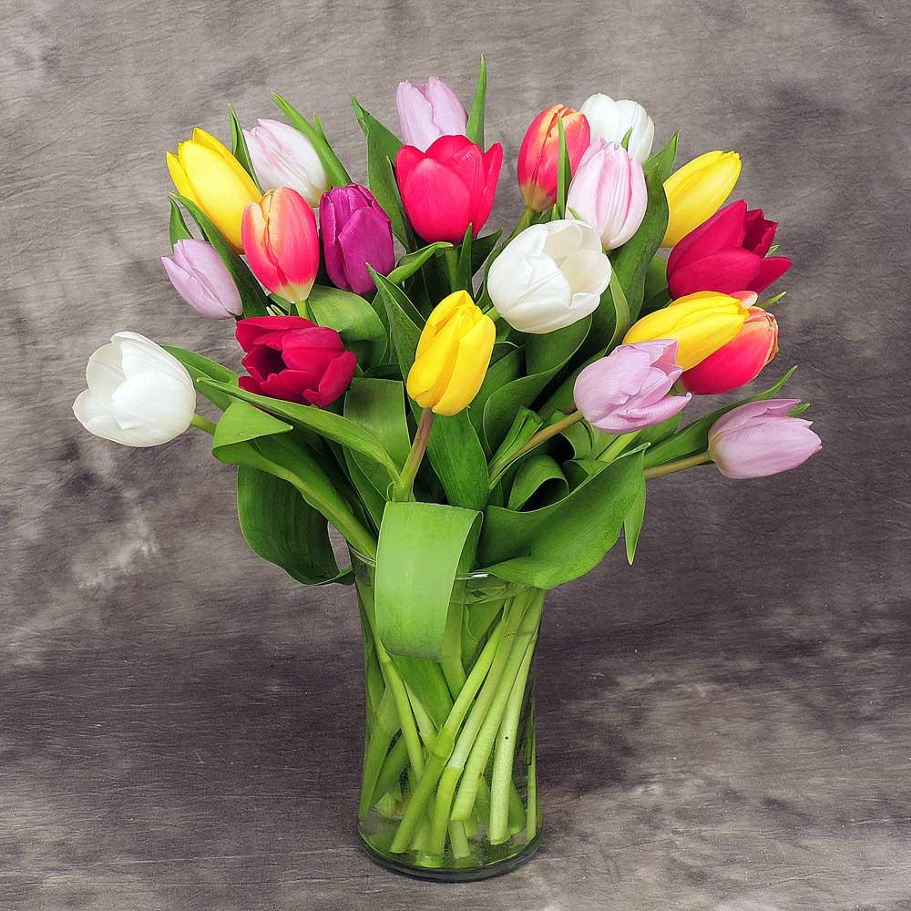 Kremp Florist Flower Delivery Subscription