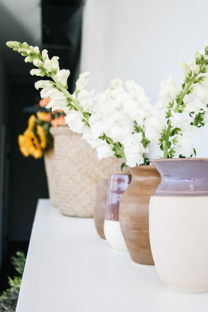 Delphinium April Birthday Flowers