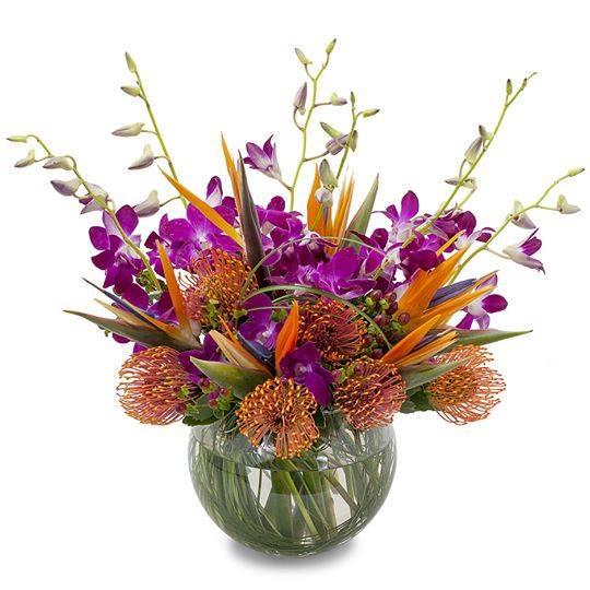 Alex Waldbart Florist Best Flower Delivery St. Louis