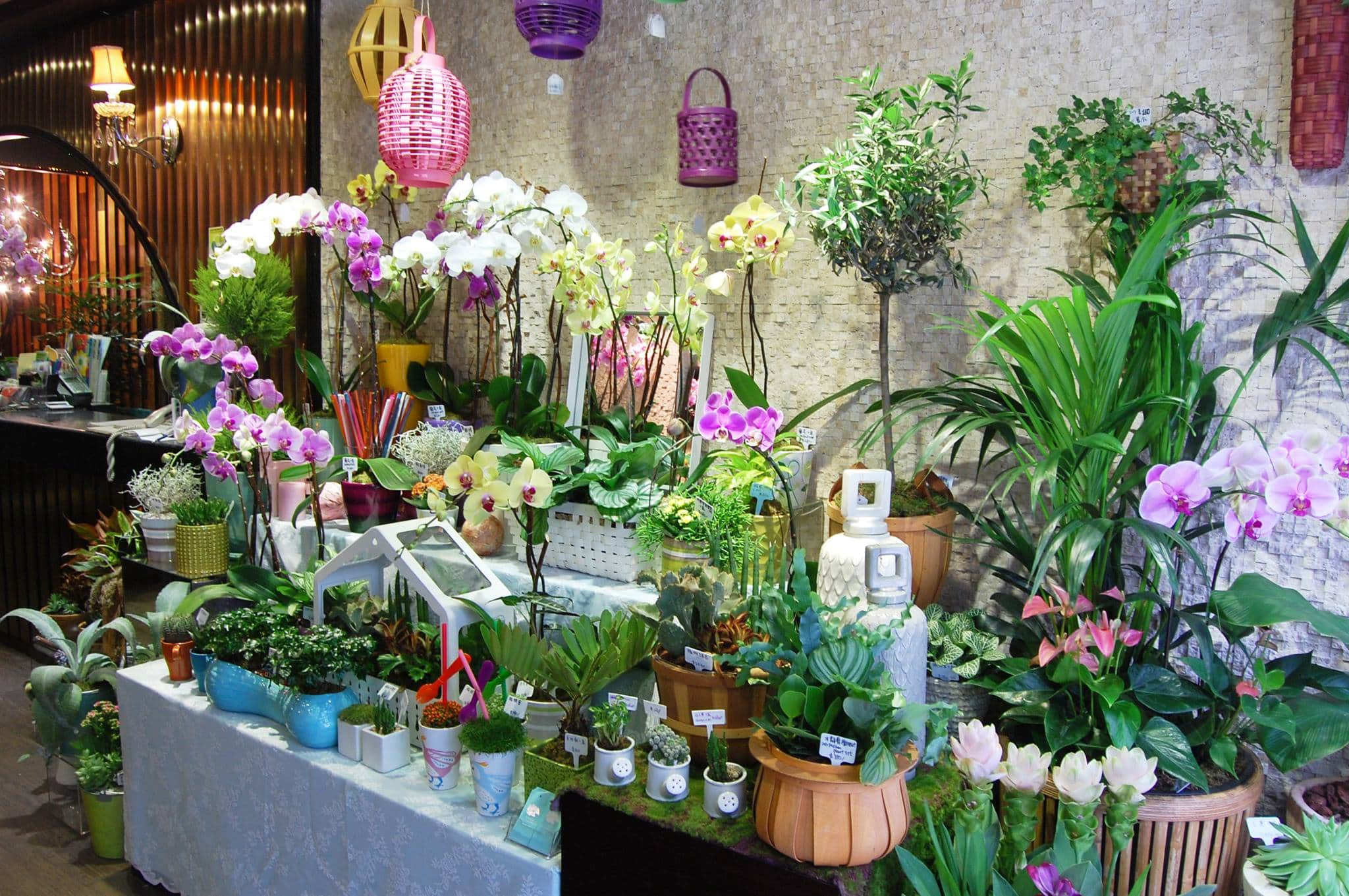 Anglo Chinese Florist Flower Delivery Hong Kong