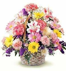 Arthur Pfiel Flowers