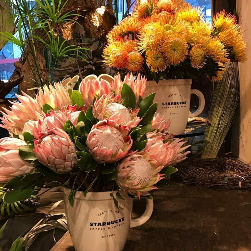 Caribbean Cuts New York City Flower Shop