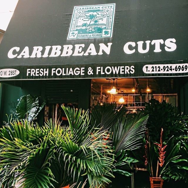 Caribbean Cuts New York City Flower Shop
