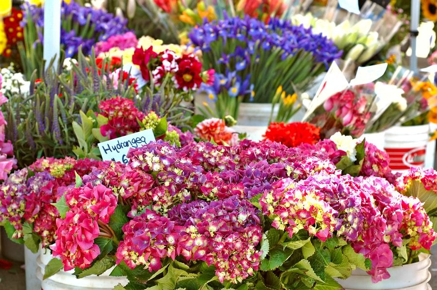 Delma's The Flower Booth Flower Delivery St. Petersburg Florida