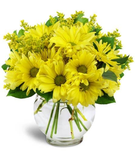 Flowers by Wild Orchid Same Day Flower Delivery in The Bronx