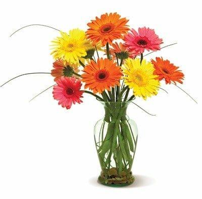Four Season Flowers San Diego Flower Delivery