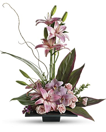 Teleflora Orchid Delivery NYC