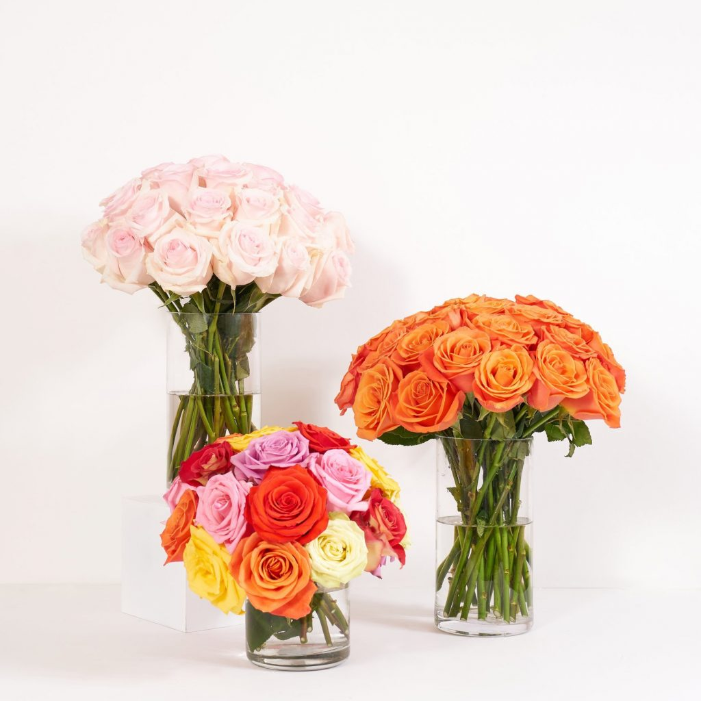 The Bouqs Flower Delivery San Diego