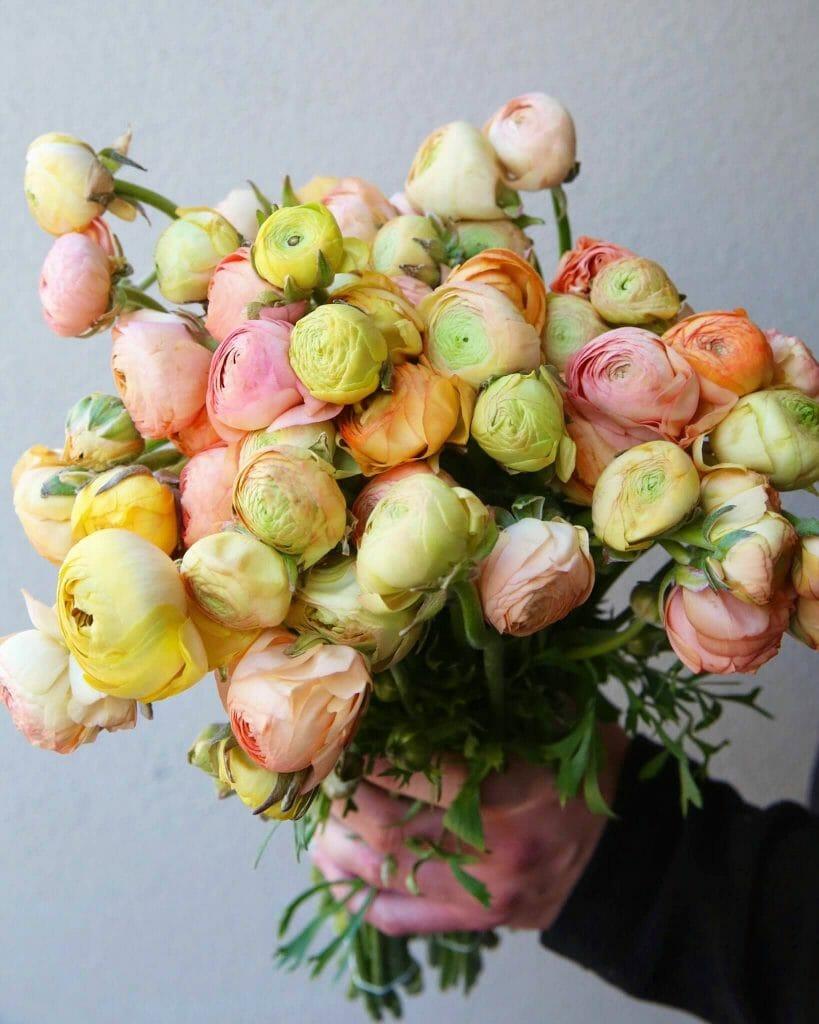 Central Square Floral Studio in Boston