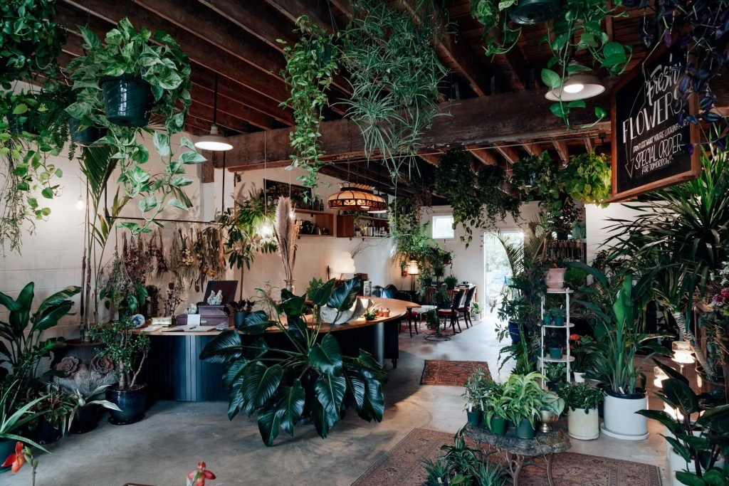 Colibri Portland Flower and Plant Shop