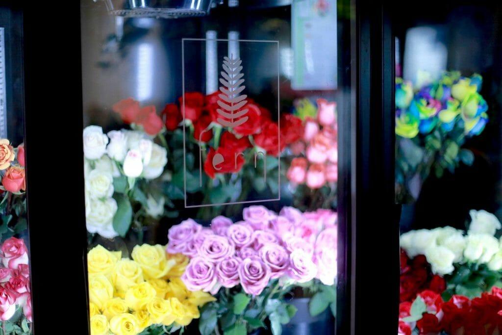 Fern Flowers Boston, MA