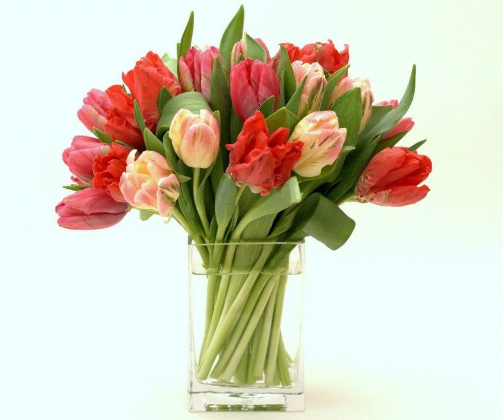 Gabriela Wakeham Manhattan Flower Delivery