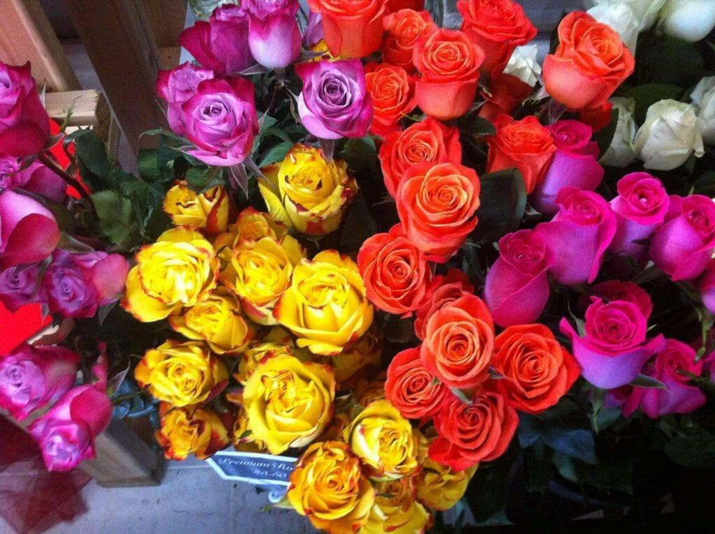 Grande Flowers Fresh Flowers in Milwaukee