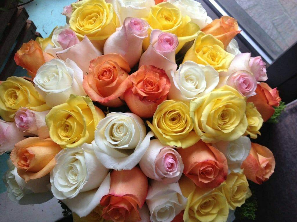 Kendall Flower Shop Floral Design in Boston