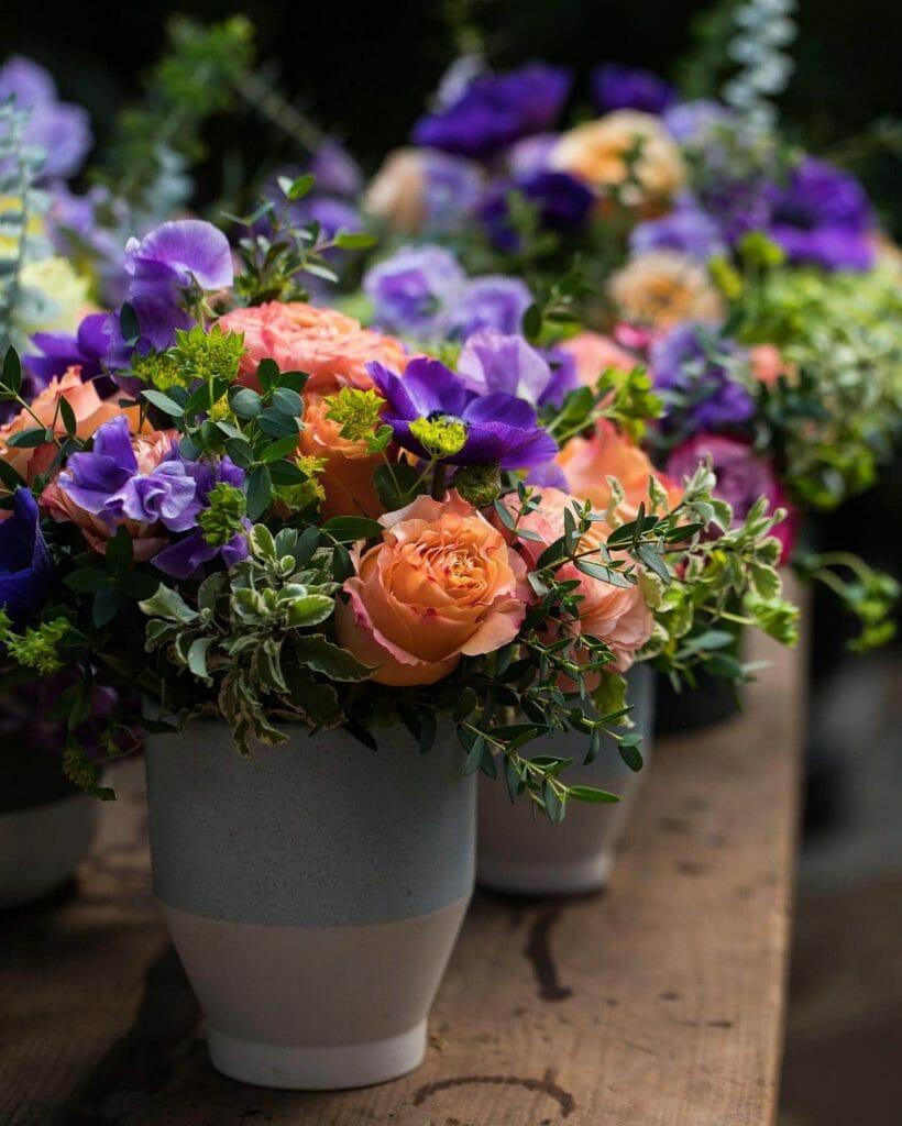 Plantshed Same Day Flower Delivery in Manhattan