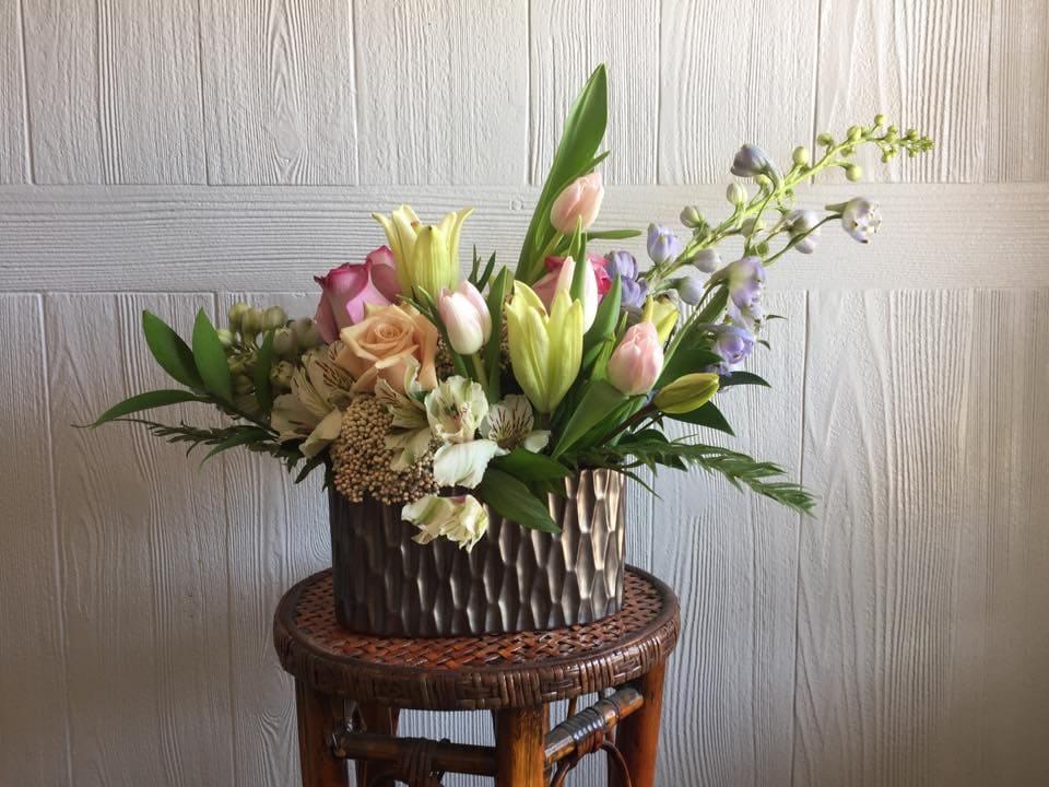 Snapdragon Flowers of Elm Grove Milwaukee