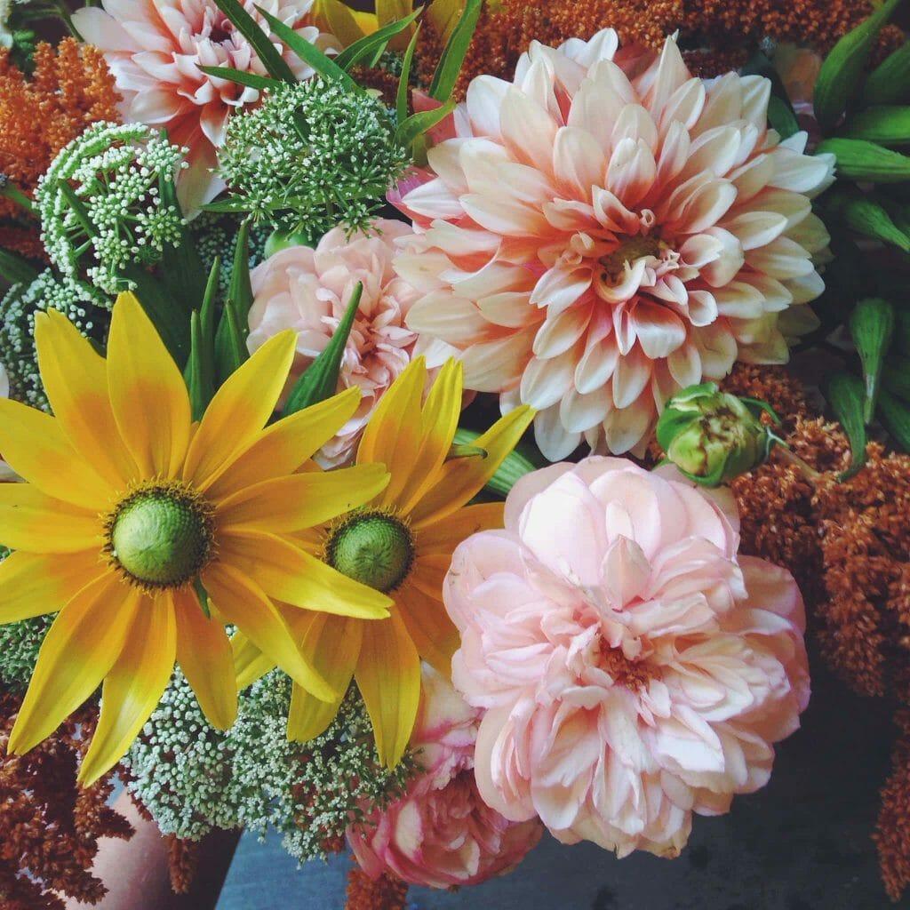 Solabee Flowers & Botanicals Portland Oregon