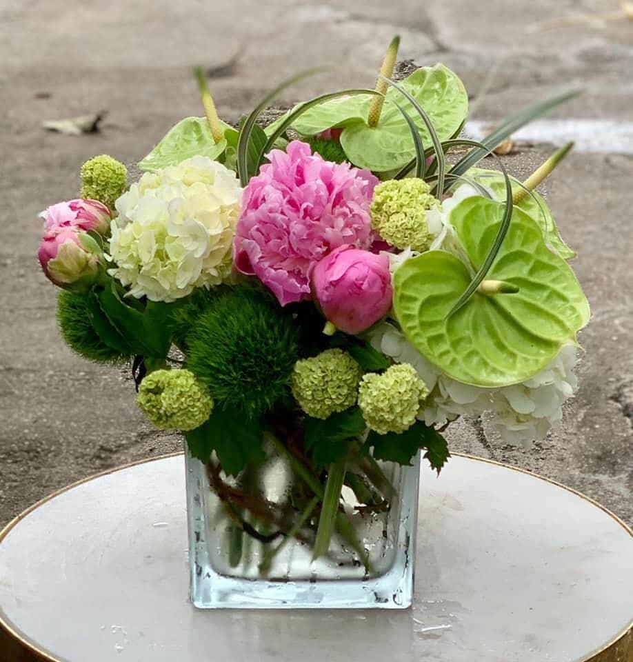 Plants n Petals Floral Studio in Houston