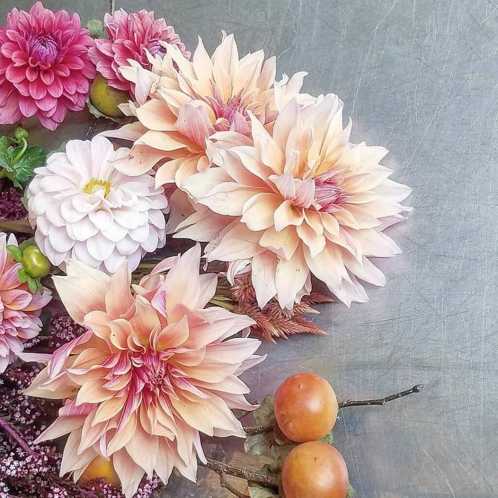 Robin Wood Flowers Flower Delivery in Cincinnati