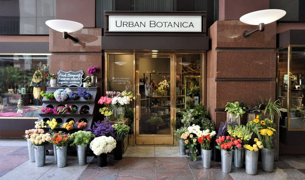 Urban Botanica Floral and Plant Shop in San Francisco CA