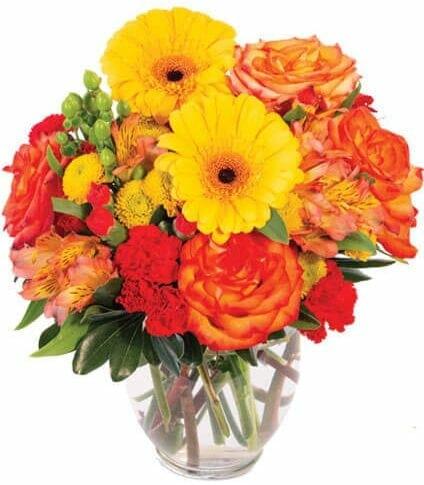 Dinsmore Florist Inc Jacksonville Floral Studio