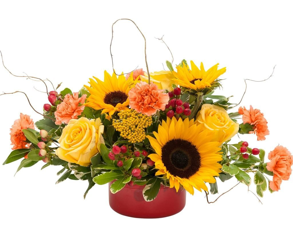 North Park Florist Buffalo Flower Delivery