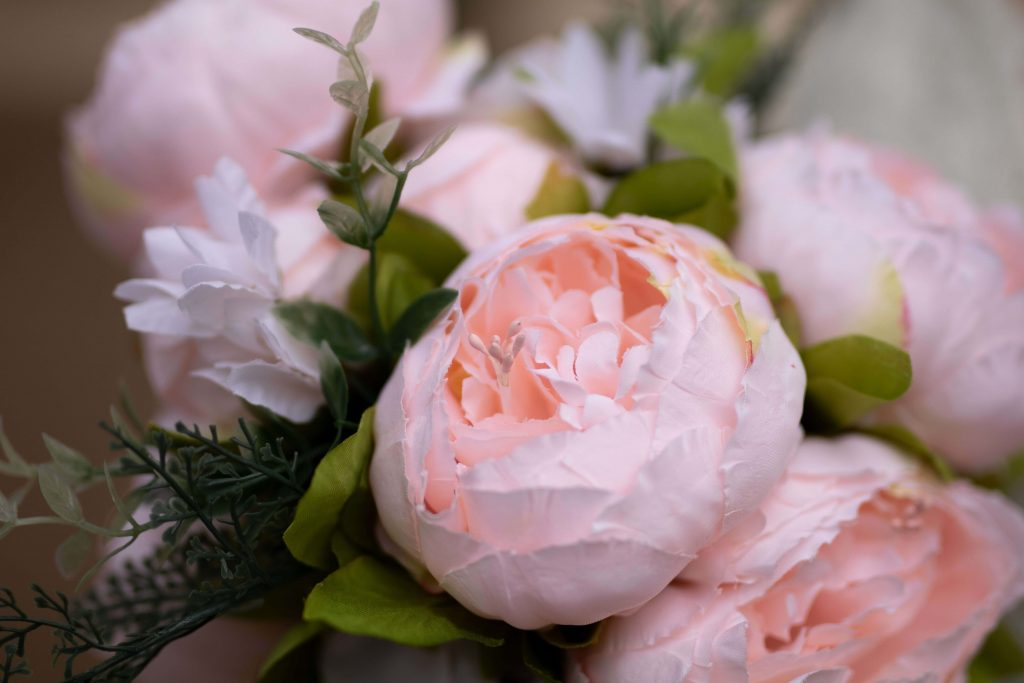 Peonies - the other Official Birth flower for November