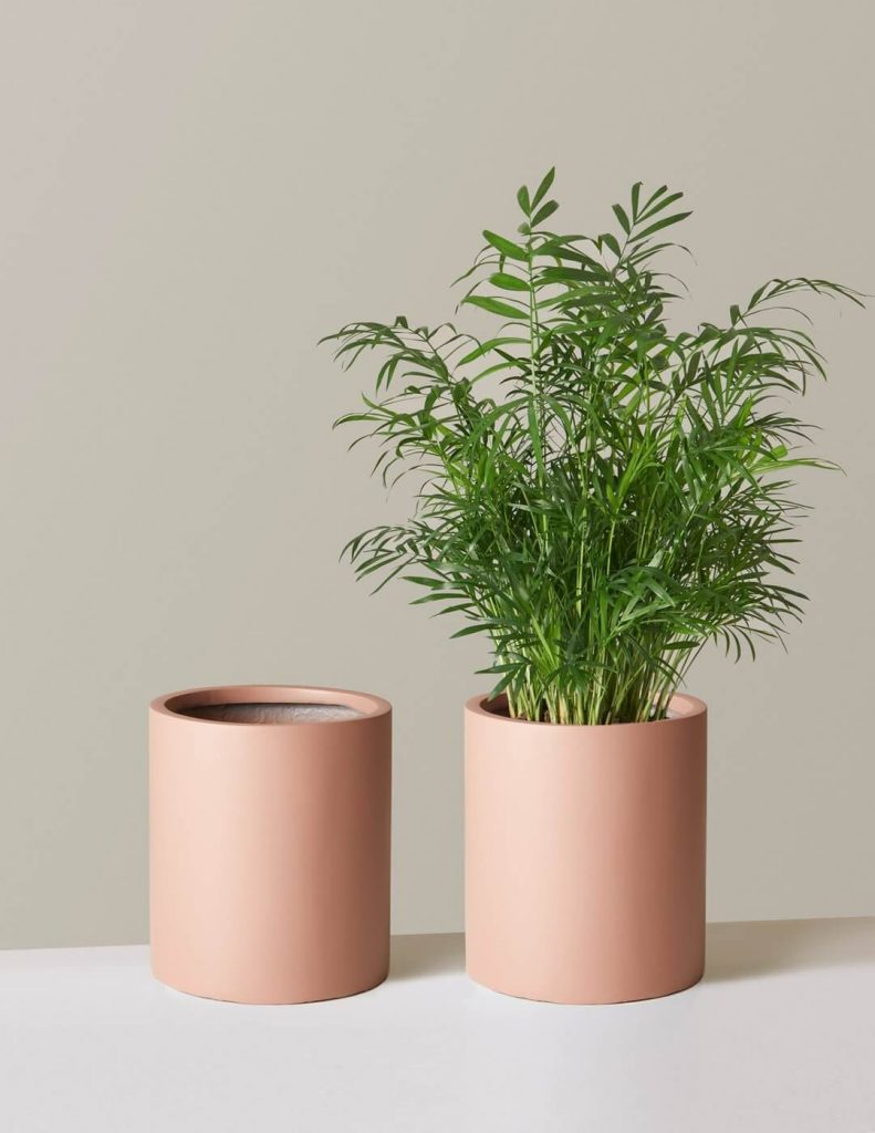 Burbank classic ceramic planters from The Sill