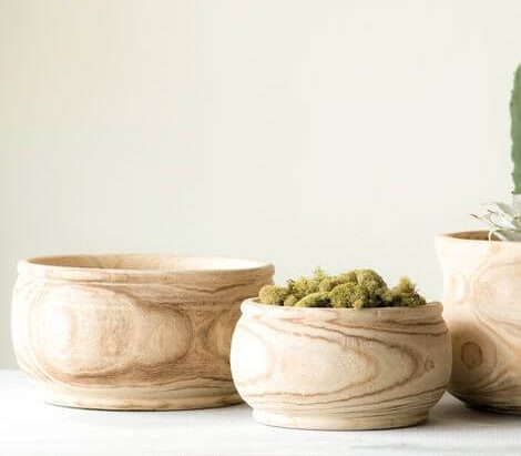 Charlynn indoor wooden bowl style planters for houseplants, succulents, and cacti
