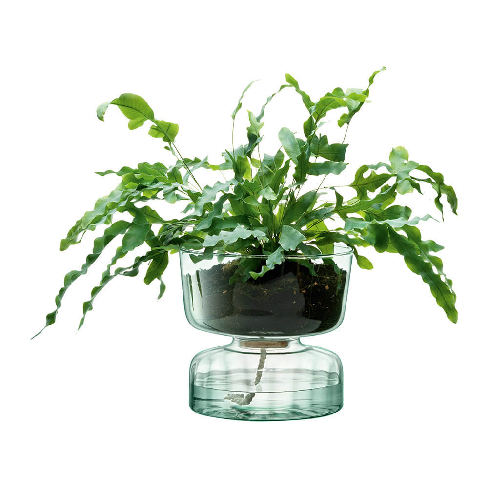 Canopy self watering indoor planter from Amara