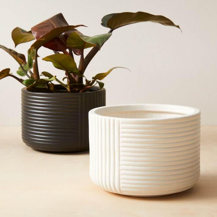 Cecilia Tabletop ceramic Planters
