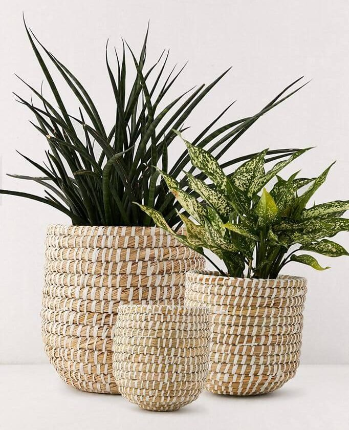 Dia Natural Indoor Basket Planter