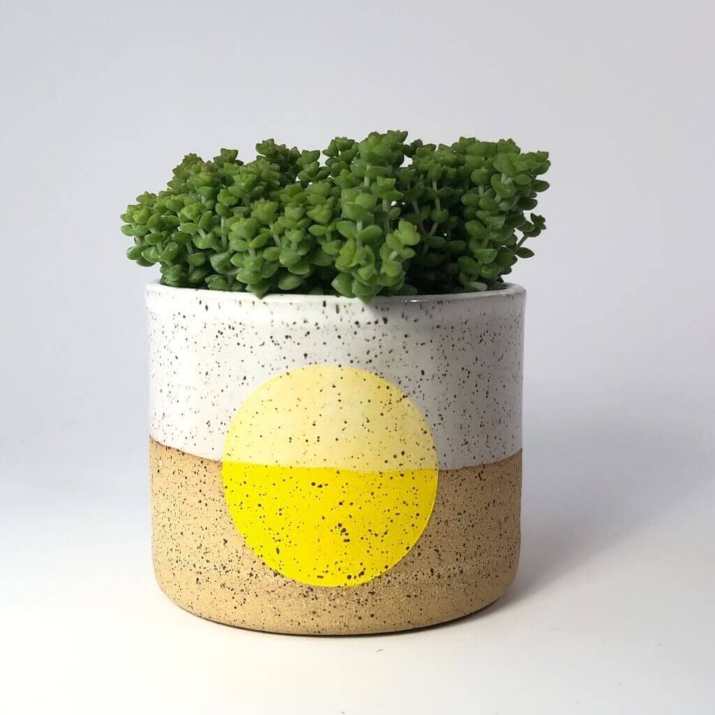 Double M Pottery - Overglazed Dot