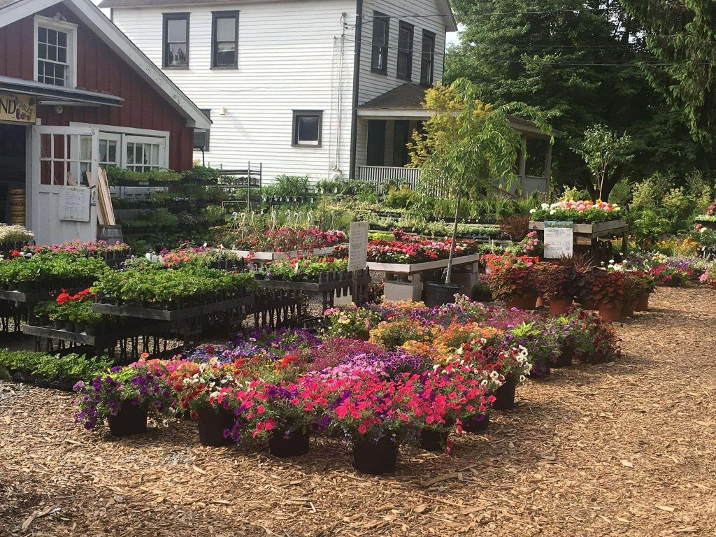 Eden Farms Garden Center and Nursery in Stamford CT