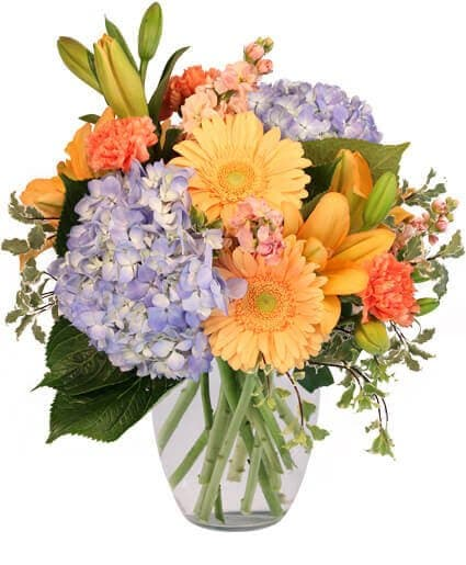 James Flowers Syracuse NY Flower Delivery