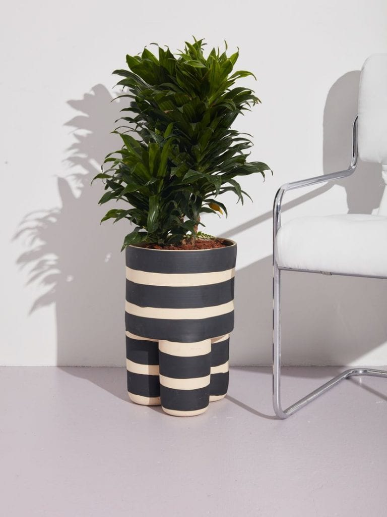 Larger Indoor Milking Stool Style Planter