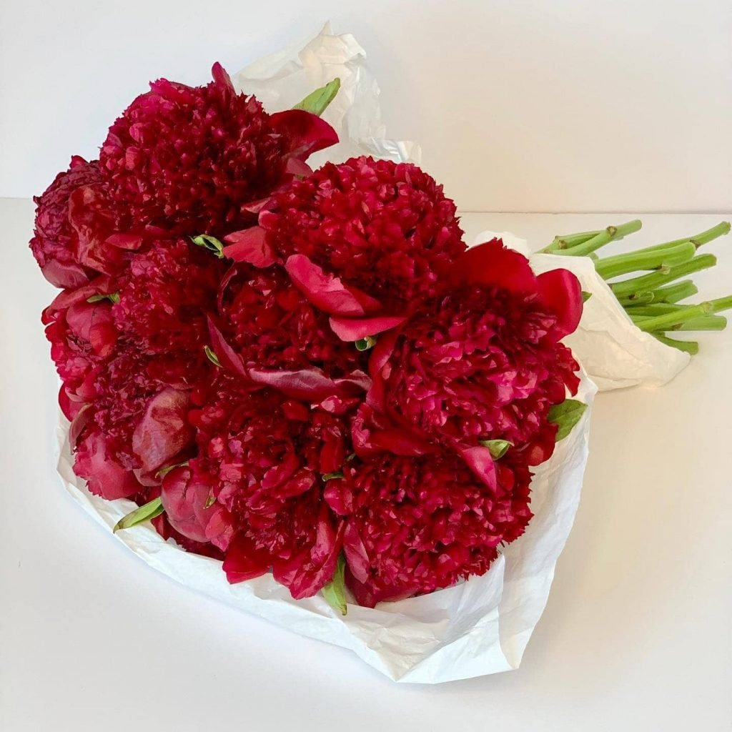 Ode a la Rose Flower Delivery in Syracuse NY