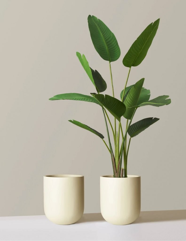 Pallas Indoor Floor Planter from The Sill