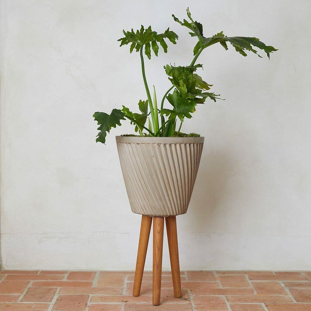 Ridged Fiber Stone & Wood Leg Indoor plant Pot